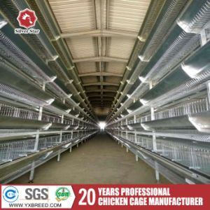 Poultry Equipment Feeder H Type 5 Tiers Layer Chicken Cage pictures & photos