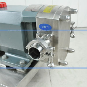 Food Grade Stainless Steel Rotary Lobe Pump for Chocolate/Honey pictures & photos