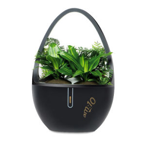 Desktop Indoor Aroma Diffuser with Negative Ions, Plant-Extracted Aroma Crystal pictures & photos