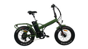 20 Inch Fast High Power Fat Tire off-Road Folding Ebike pictures & photos
