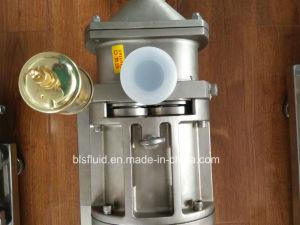 L&B High Pressure Viscosity Twin Screw Pump Paste Pump (2.5MPa) pictures & photos