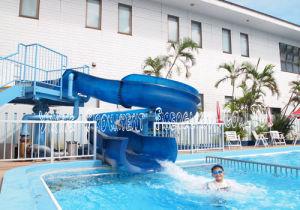 Small Children Spiral Slide Body Slides pictures & photos