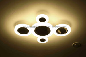 Latest Decorative Ceiling Light for House pictures & photos
