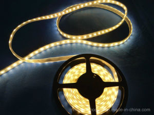 12V SMD 5054 LED Strip for Advertising Light Box pictures & photos
