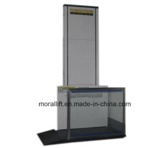 Hydraulic Wheelchair Lift for Old People pictures & photos