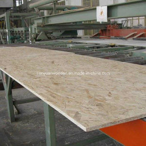 9-25mm Decoration OSB Board (QDGL--1222) pictures & photos