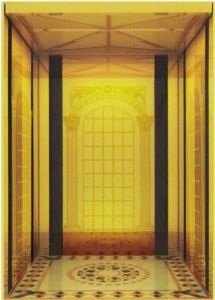 AC Vvvf Gearless Drive Passenger Elevator Without Machine Room (RLS-224) pictures & photos