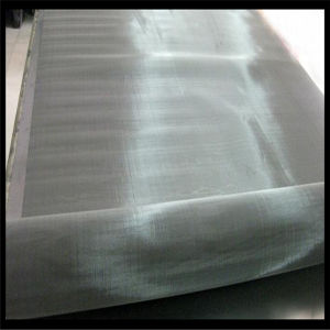 Direct Manufacturer Made in China Stainless Steel Wire Mesh pictures & photos
