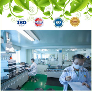 High Quality Garlic Oil Softgel Lower Blood Sugar pictures & photos
