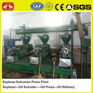 Technical Support 1-100t Soybean Oil Pressing Plant pictures & photos