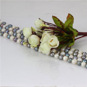 Snh 60inches Long Fashion Freshwater Pearl Necklace pictures & photos