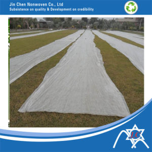 Nonwoven Fabric for Land Cover pictures & photos
