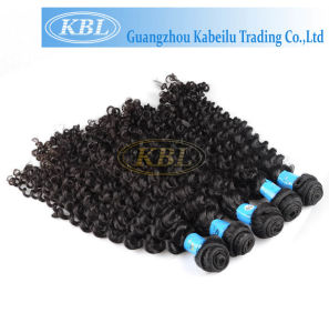 100% Brazilian Deep Curly Virgin Hair (KBL-BH-DW) pictures & photos