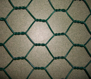 Chicken Wire Mesh/Hexagonal Wire Mesh (XMGB06) pictures & photos