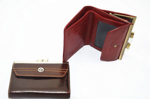 Lady Classic Leather Wallet/Purse/Bag (JYW-29161) pictures & photos