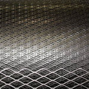 Factory Price Expanded Metal Netting pictures & photos
