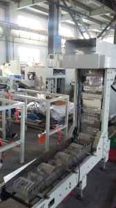 Automatic Spaghetti Pasta Noodle Weighing Packing Machine with One Weighers pictures & photos