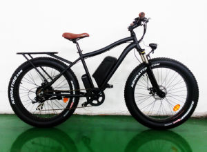 Snow Bike Fat Tire Big Power Cheap Mountain E Bike pictures & photos