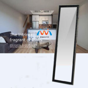 Bedroom Modern Full Length Dressing Mirror
