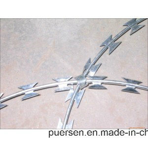 Factory Razor Blade Barbed Wirehot Dipped Galvanized Razor Wire pictures & photos