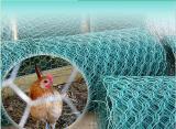 Chiken Wire