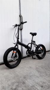 20′ Fat Tire Folding Snow Electric Bike pictures & photos