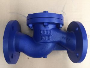 DIN blue Lift Check Valve (H41H-16) pictures & photos