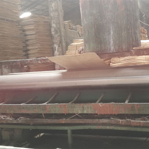 Bintangor Face Poplar Core Commercial Plywood for Decoration Bb/Bb Grade pictures & photos