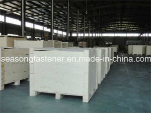 Stainless Steel Contact Washer (NFE 25-511) pictures & photos