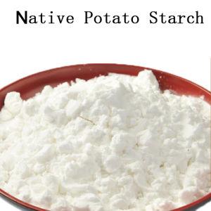 Starch (potato) pictures & photos
