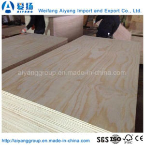 Exellent Chinese Pine Veneer Faced Plywood pictures & photos
