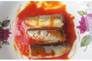 Canned Mackerel in Tomato Sauce or Oil pictures & photos
