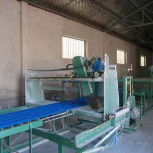 Hot Sales FRP Sheet Making Machine pictures & photos