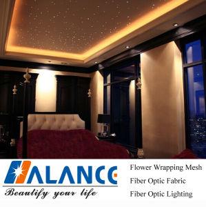 Optical Fiber Lighting for Theatre Ceiling Decoration (SC-003)
