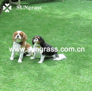 Safety Artificial Turf for Pet/Garden/Animal (QDS-HG-30) pictures & photos