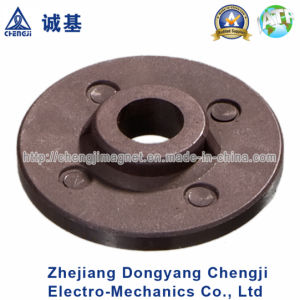 Various Shape Injection Ring Magnet with ISO/Ts16949 Certification
