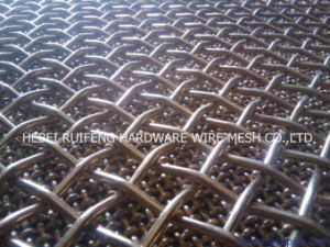 Crimped Wire Mesh for Architecture Decoration pictures & photos