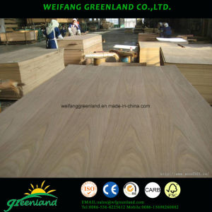 Sapele Engineered Veneer Plywood pictures & photos