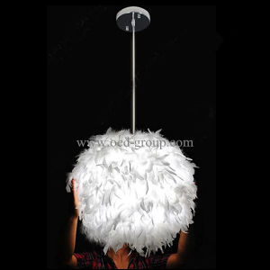 LED Feather Lamp, Duck Feather Lamp, White Duck Feather LED Pendant Lamp. pictures & photos