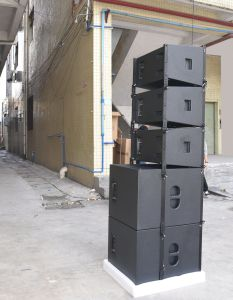Vera 12 12inch Line Array Speaker Sound System Equipment pictures & photos