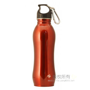 Single Walls Stainless Steel Water Bottle Travel Bottle pictures & photos