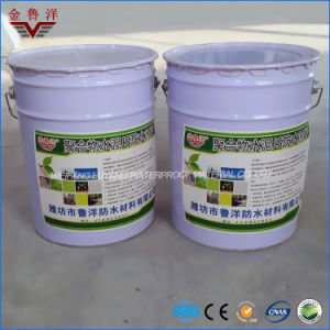 Js Waterproof Coating / Polymer Cement Waterproof Slurry pictures & photos