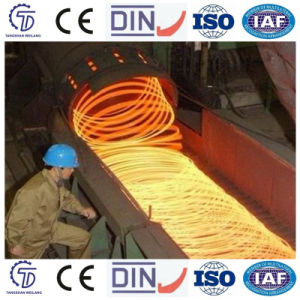 High Speed Wire Rod Laying Head pictures & photos