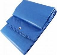 PE Material Plastic Tarpaulin Sheet pictures & photos