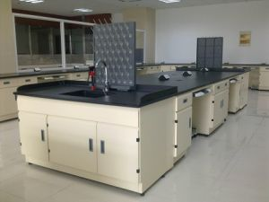 High Quality Stainless Steel Laboratory Workbench (PS-WB-003) pictures & photos