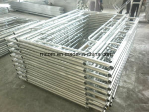 Hot DIP Galvanized Scaffold Ladders for Construction pictures & photos