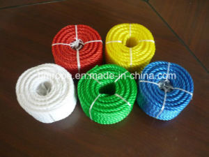 Clothes Line (PE clothes line, PVC clothes line) pictures & photos