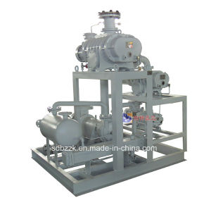 Roots/Water Ring Vacuum Pumps (package unit)