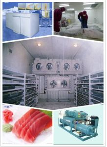 Cold Storage for Frozen-Food & Cooled-Food (RXH250D)
