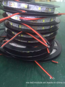 China Wholesale High Brightness Flexible SMD5730 LED Strip pictures & photos